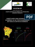 Boletim-09 - Comitê Científicov7