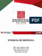 EXPOSICIÓN ENERGIA DE BIOMASA