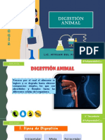 Digestion animal - 3° sec I BIMESTRE