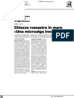 Chiazze rossastre in mare. Penna
