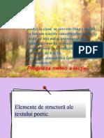 Textul Poetic
