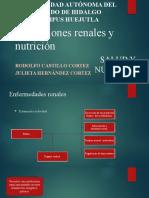 Alteraciones renales y nutrición