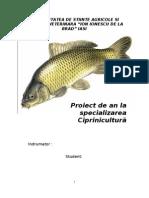 Proiect amenajarea Ciprinicola