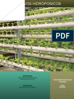 proyecto cultivos hidroponicos