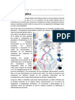 Importancia de Fisiología en La Profesión de Optometria