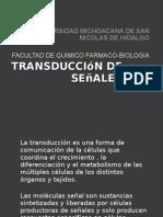 Transduccion de Señales