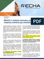 eu_reach_leaflet_it