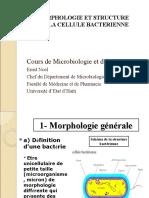 Morphologie et structures des bacteries (3)