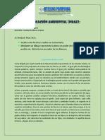 ANALISIS DE LECTURA PROYECTOS TRANSVERSAL MEDIO AMBIENTE.