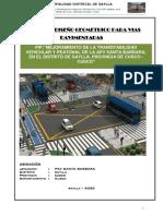 4- DISEÑO GEOMETRICO-PAV