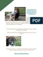 Sonidos Para Animales  www.sonidoyvidacom