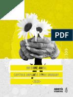 Informe Anual Capitulo Ampliado Sobre Uruguay 2020-2021