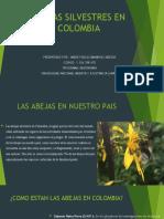 ABEJAS SILVESTRES EN COLOMBIA