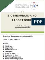 Biossegurança No Laboratório