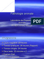 introduction patho animale