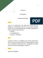 TEG MI Endomarketing 2021 Cap I DESARROLLO II