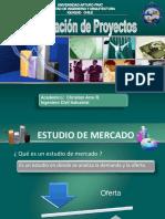 1-Estudio de Mercado 2015