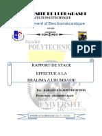 Rapport de Stage Bralima