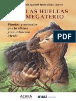 Tras-las-huella-del-megaterio