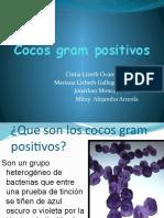 6 COCOS GRAM +