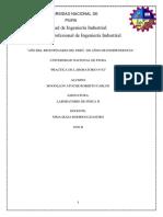 LABORATORIO N°02_FISICA II_MOGOLLON ATOCHE ROBERTO CARLOS
