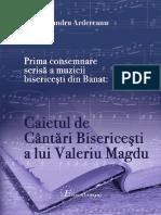 Muzica c2 Ion Alexandru Ardereanu B5 MuzArt B5 102 BDI & Www