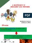 Apresentação1 met.carboidratos