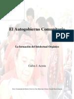 EL AUTOGOBIERNO COMUNITARIO
