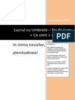Foi_de_lucru_webinar_In_inima_nevoilor-1