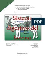 sistema digestivo del bovino