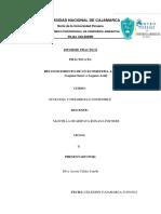 Silva Acosta Celida Yaneth , Informe Practico