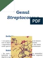 2. Streptococcus