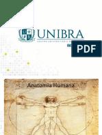 Aula 1- Anatomia Introducao