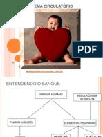 Aula de Fisiologia _ Sist Circulatorio