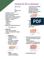 Tecido Epitelial, conjuntivo e glandular