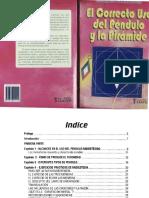 Gustavo Fernandez El Uso Correcto Del Pendulo y La Piramide