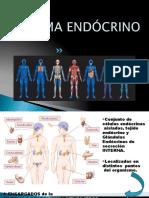 SISTEMA_ENDOCRINO_1 (4)
