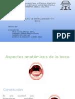 Boca.pdf · versión 1