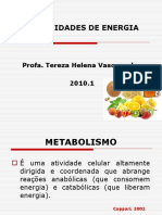 NECESSIDADES DE ENERGIATEREZA