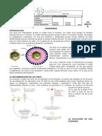BIO_UNI1_Material_1_Guía_Así infecta el coronavirus_semana_19 junio