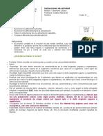 Instrucciones proyecto dietas veganas y vegetarianas