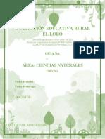 PLANTILLA GUIA C. NATURALES (1)