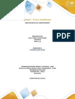 Unidad 1 - Tarea 2 -Estructura del Trabajo a Entregar
