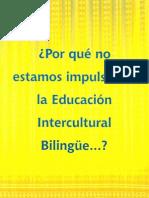 ¿Por qué no estamos impulsando la educación intercultural bilingüe…?