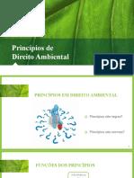2021 - Aula 03 - Princípios de Direito Ambiental - 08 03 2021 (1)