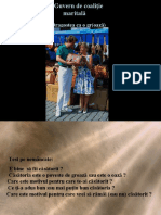 Prezentare Guvern de coalitie maritala 1