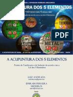 E BOOK ACUPUNTURA DOS 5 ELEMENTOS