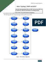 BGP&OSPFConfig