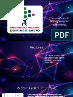 presentacion vectores2021