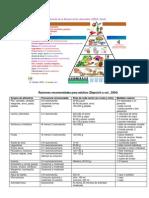 PiramideRecomendadaSENC2004